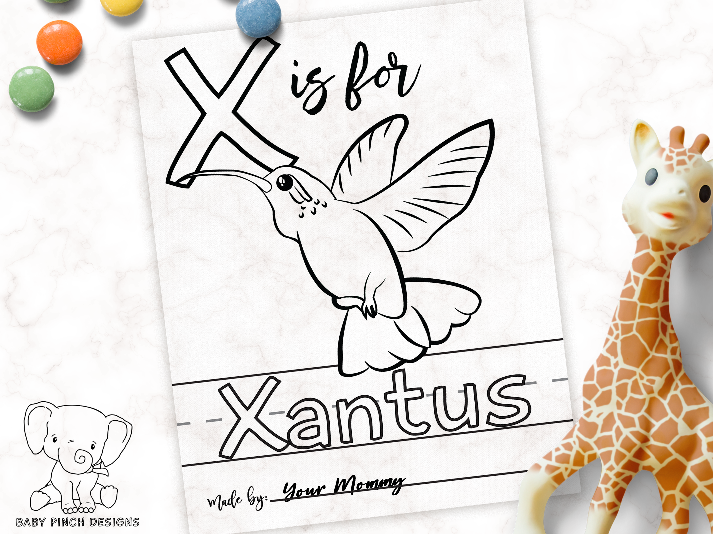 Woodland Page - Xantus